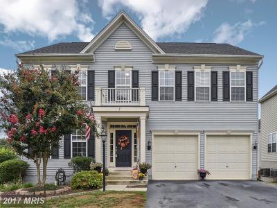 Fredericksburg Single Family Home For Sale: 7 Garnet Way