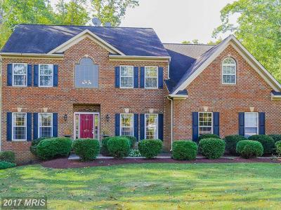 Fredericksburg Single Family Home For Sale: 671 W Rocky Run Road