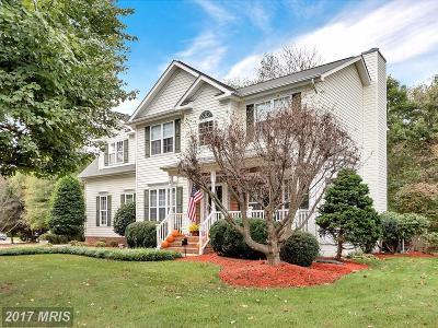 Fredericksburg Single Family Home For Sale: 2 Quartz Circle