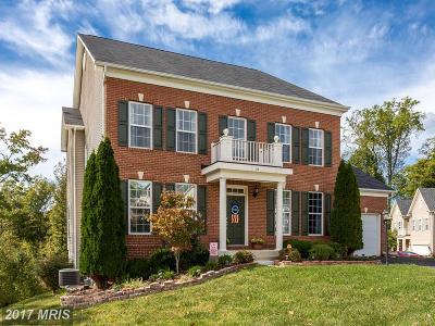 Fredericksburg Single Family Home For Sale: 21 Garnet Way