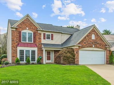 Fredericksburg Single Family Home For Sale: 6 Sarah Court