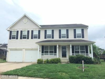 Fredericksburg Single Family Home For Sale: 38 Glen Oak Road