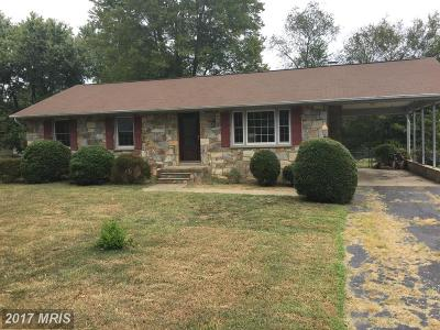 Fredericksburg Single Family Home For Sale