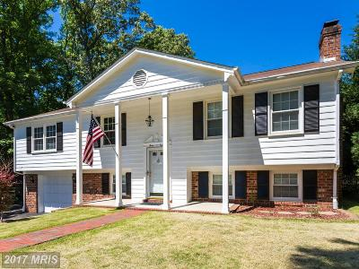 Fredericksburg Single Family Home For Sale: 308 Camden Drive