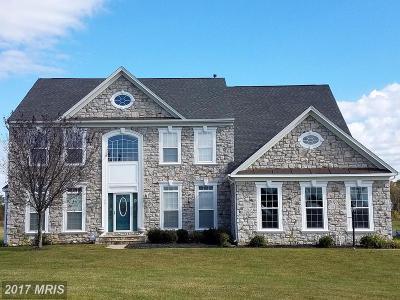 Fredericksburg Single Family Home For Sale: 15 Gateway Drive