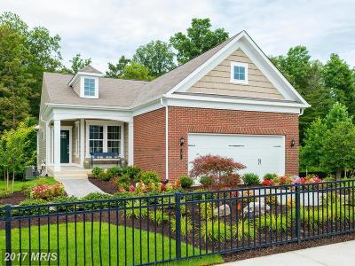 Celebrate Single Family Home For Sale: 11 McQuarie Drive #1