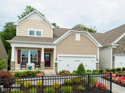 Celebrate Single Family Home For Sale: 11 McQuarie Drive #3