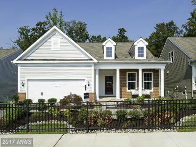Celebrate Single Family Home For Sale: 11 McQuarie Drive #5