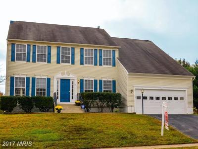 Fredericksburg Single Family Home For Sale: 27 Basalt Drive