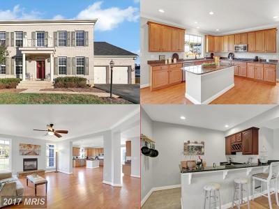 Fredericksburg Single Family Home For Sale: 58 Sapphire Street
