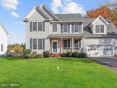 Fredericksburg Single Family Home For Sale: 125 Brickert Street