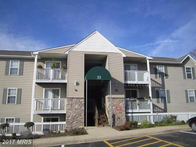 Stafford Rental For Rent: 33 Fern Oak Circle #101