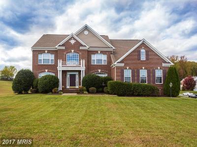 Fredericksburg VA Single Family Home For Sale: $675,000