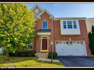 Fredericksburg Single Family Home For Sale: 108 Carriage Hill Drive