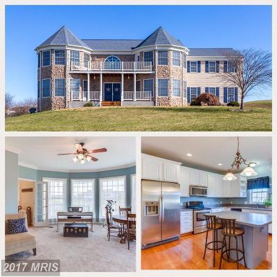Stafford VA Single Family Home For Sale: $574,900