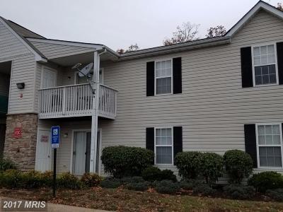 Stafford Condo For Sale: 50 White Pine Circle #202