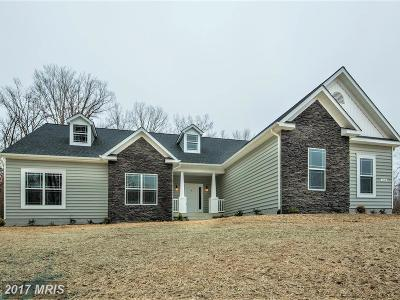 Stafford Single Family Home For Sale: 198 Mount Hope Church