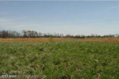 Stafford Residential Lots & Land For Sale: 125 Perry Winkle Lane