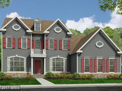 Fredericksburg Single Family Home For Sale: Bronco Ln.