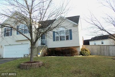 Fredericksburg Single Family Home For Sale: 3 Little Field Drive