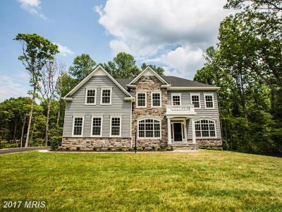 Fredericksburg Single Family Home For Sale: 48 Bronco Lane