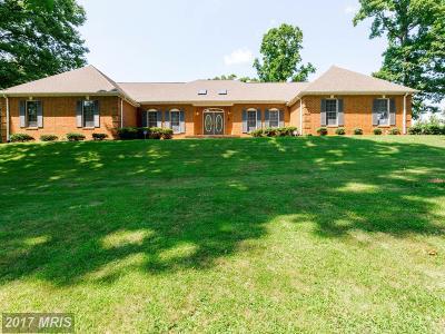 Fredericksburg Single Family Home For Sale: 7 English Hills Drive