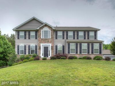 Stafford Single Family Home For Sale: 1317 Mountain View Road