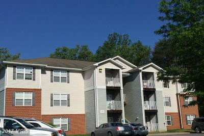 Stafford Rental For Rent: 501 Garrison Woods Drive #303