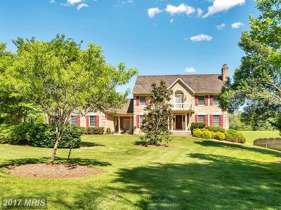 Stafford Single Family Home For Sale: 77 Autumn Drive