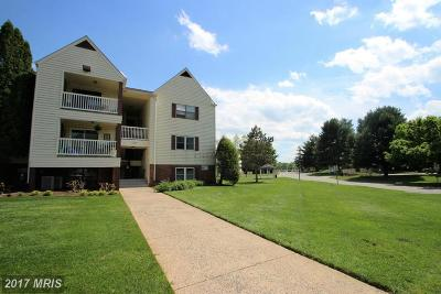 Stafford Condo For Sale: 100 Chesterfield Lane #203