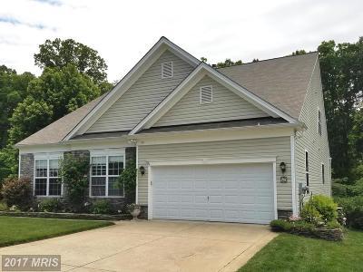 Fredericksburg Single Family Home For Sale: 50 Goose Creek Circle