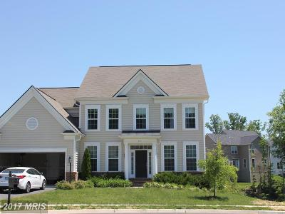 Colonial Forge Single Family Home For Sale: 19 Smelters Trace Road