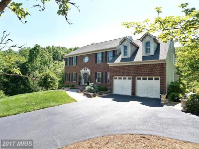 Stafford Single Family Home For Sale: 34 Palace Lane