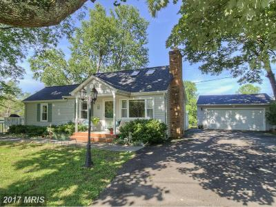 Fredericksburg Single Family Home For Sale: 590 Ramoth Church Road