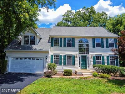 Fredericksburg Single Family Home For Sale: 18 Norfolk Street