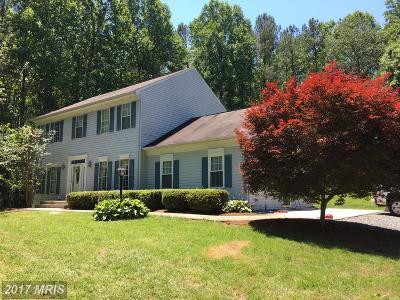Fredericksburg Single Family Home For Sale: 7 Countryside Drive