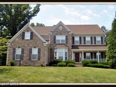 Fredericksburg Single Family Home For Sale: 75 River Ridge Lane