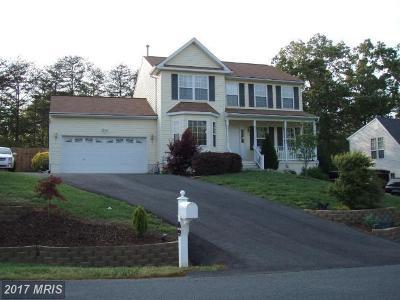 Fredericksburg Rental For Rent: 6 Argyle Hills Drive