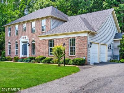 Stafford Single Family Home For Sale: 48 Monument Drive
