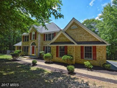 Fredericksburg Single Family Home For Sale: 254 Queen Anne Drive