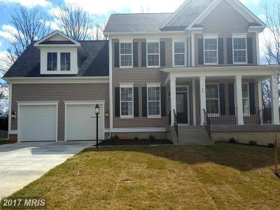 Fredericksburg Single Family Home For Sale: Sutter Drive