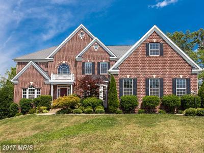 Fredericksburg Single Family Home For Sale: 40 Adrian Way