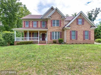 Fredericksburg Single Family Home For Sale: 228 Wood Landing Road