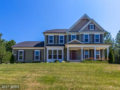 Fredericksburg Single Family Home For Sale: 95 Ruby Glen Lane