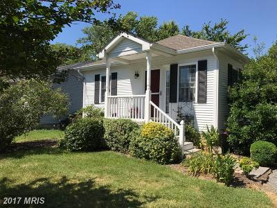 Easton Single Family Home For Sale: 203 Wrightson Avenue