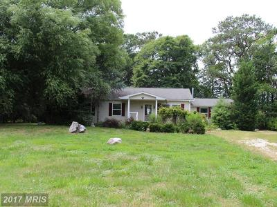 Single Family Home For Sale: 6800 Tilghman Island Road