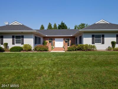 Easton Single Family Home For Sale: 56 Davis Lane