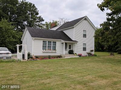 Easton Single Family Home For Sale: 30149 Matthewstown Road
