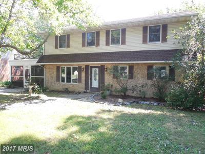 Easton Single Family Home For Sale: 718 Wayside Avenue