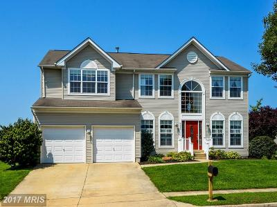 Easton Single Family Home For Sale: 8656 Misty Brook Way
